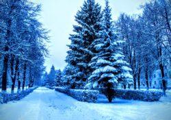 Зимний романс